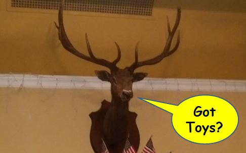 talking elk