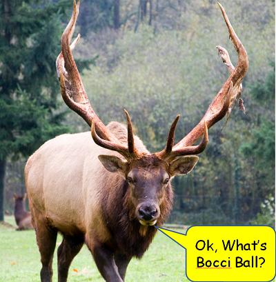Elk Bocci